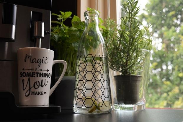 plantjes keuken