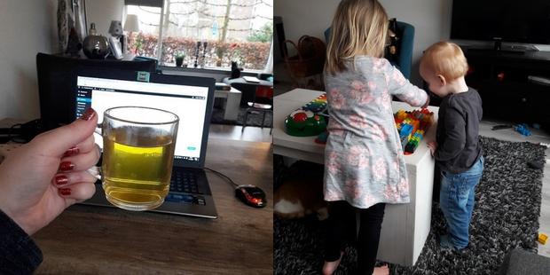 groene thee afvallen